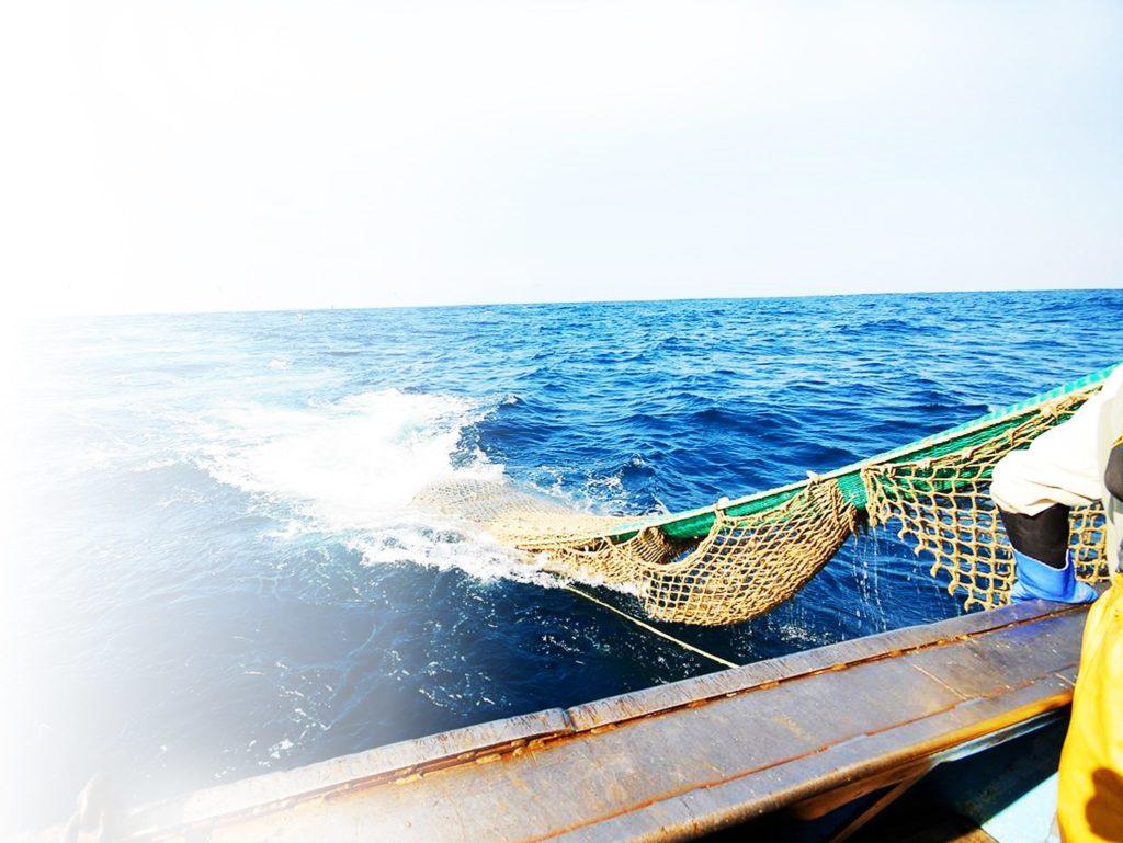 conserverie delphine et olivier